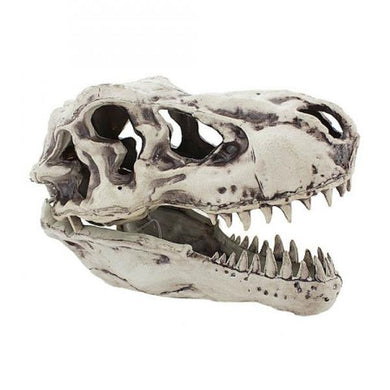Sonic T Rex Skull Halloween Prop - The Base Warehouse