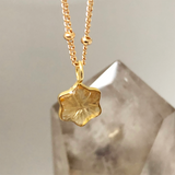 Carved Star Pendant Citrine