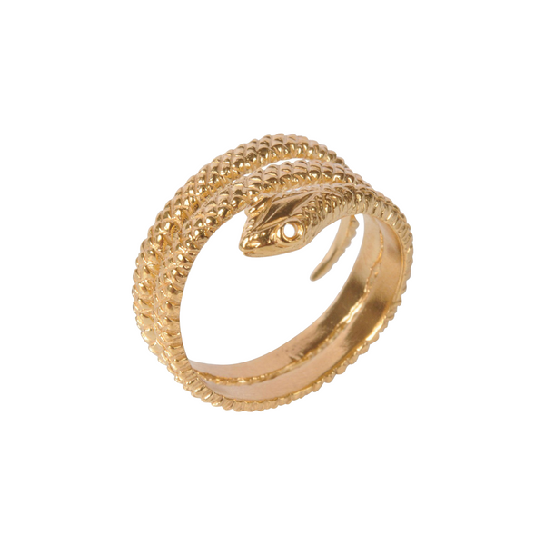Snake Wrapped Ring - Mirabelle Jewellery