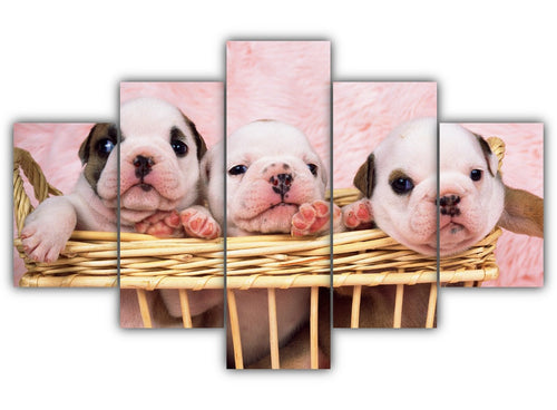 Multi Panel Adorable Puppies Split Grouped Wall Canvas Art