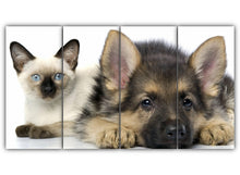 Load image into Gallery viewer, Cat and Dog