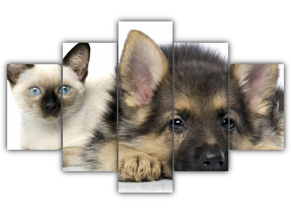 Multi Panel Cat and Dog Split Grouped Wall Canvas Art