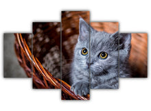 Load image into Gallery viewer, Multi Panel Cute Gray Kitten in a Basket Split Grouped Wall Canvas Art