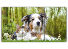 Load image into Gallery viewer, Dog and Cat