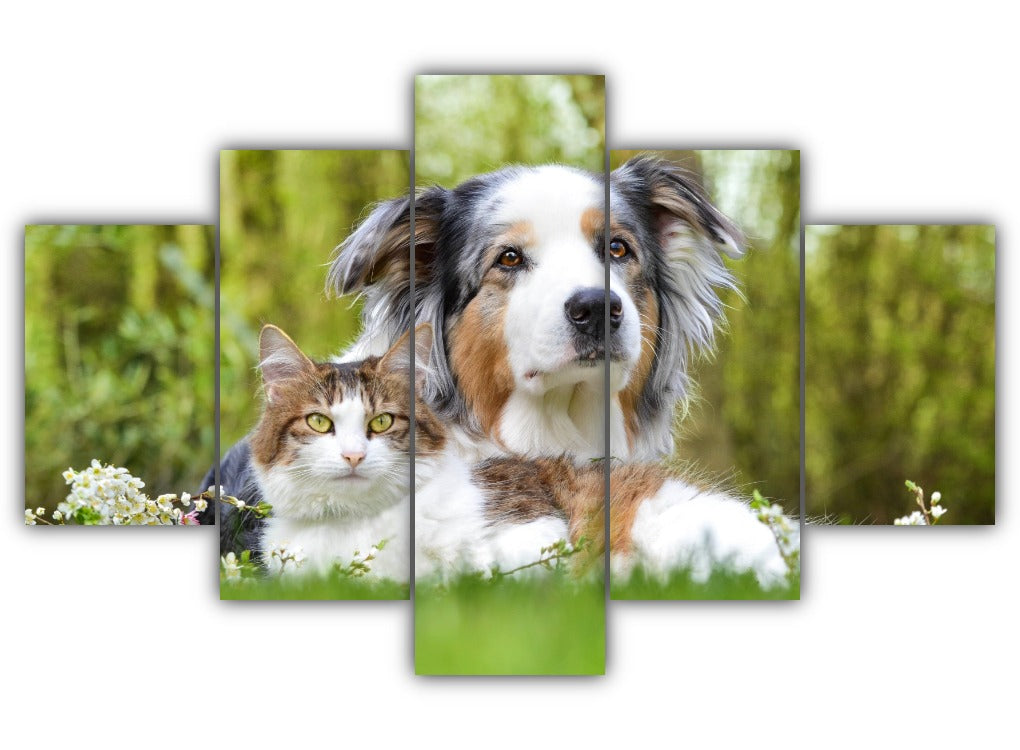 Multi Panel Dog and Cat Split Grouped Wall Canvas Art