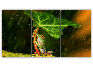 Frog and the Leaf Umbrella