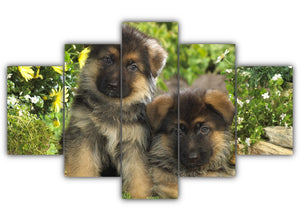 Multi Panel German Shepherd Puppies Split Grouped Wall Canvas Art