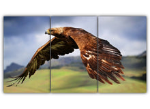 Load image into Gallery viewer, Golden Eagle