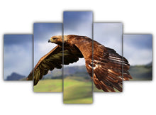 Load image into Gallery viewer, Multi Panel Golden Eagle Split Grouped Wall Canvas Art