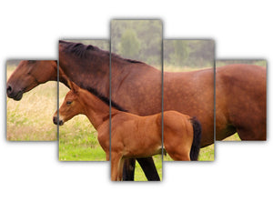 Multi Panel Mare and Foal Split Grouped Wall Canvas Art