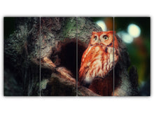 Load image into Gallery viewer, Mighty Owl