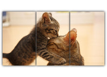 Load image into Gallery viewer, Mommy Cat and Kitten