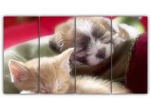 Load image into Gallery viewer, Pup and a Kitten