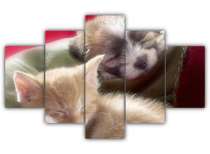 Multi Panel Pup and a Kitten Split Grouped Wall Canvas Art