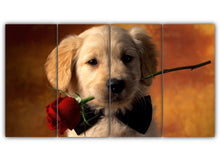 Load image into Gallery viewer, Red Rose Retriever