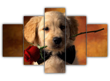 Load image into Gallery viewer, Multi Panel Red Rose Retriever Split Grouped Wall Canvas Art