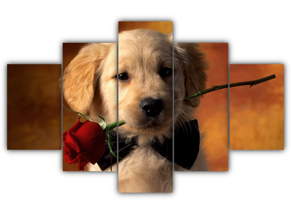 Multi Panel Red Rose Retriever Split Grouped Wall Canvas Art