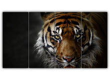 Load image into Gallery viewer, The Big Cat