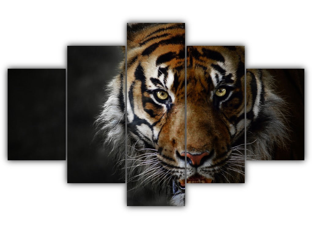 Multi Panel The Big Cat Split Grouped Wall Canvas Art