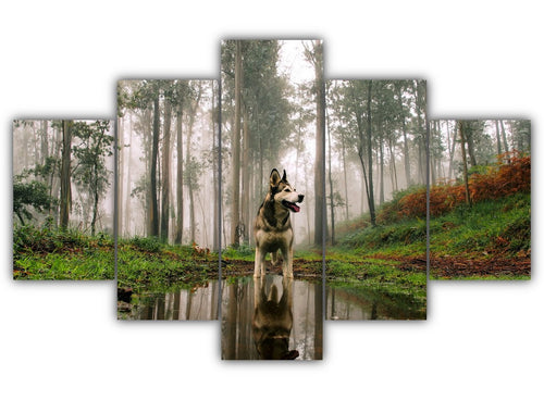 Multi Panel The Husky In Woods Split Grouped Wall Canvas Art