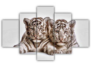 Multi Panel Tow cute white tiger cubs Split Grouped Wall Canvas Art