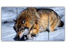 Load image into Gallery viewer, Wolf in the Snow