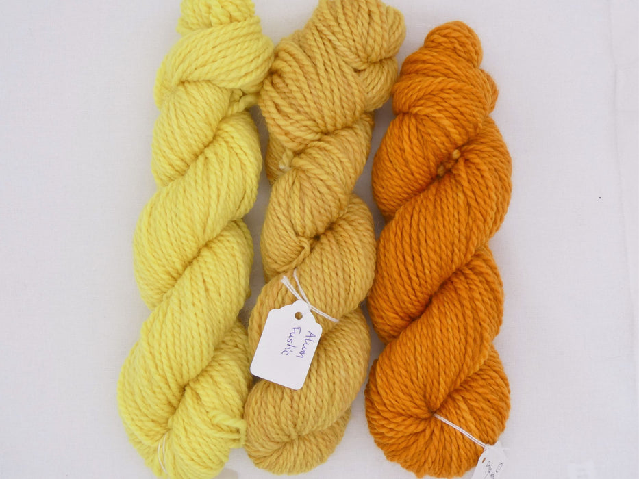 Aran Superwash BFL Yarn, Gold/Yellow