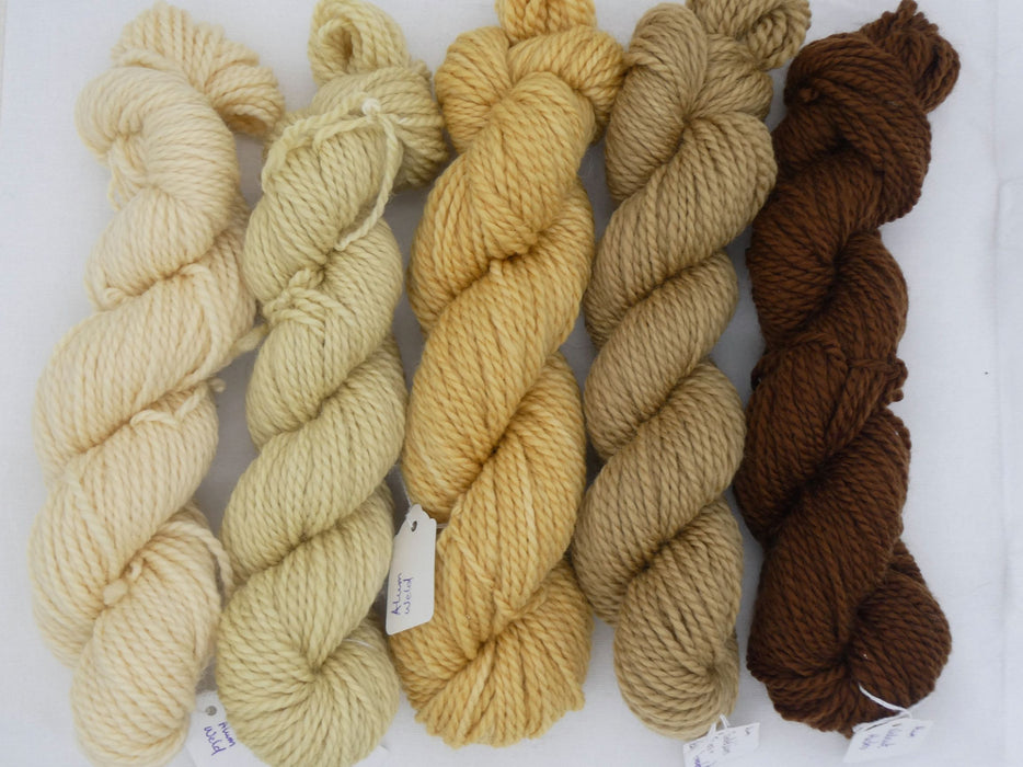Aran Superwash BFL Yarn, Naturals