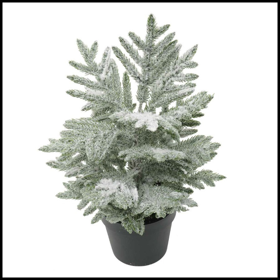 "Frosted Fir 14"" Tree in Pot"