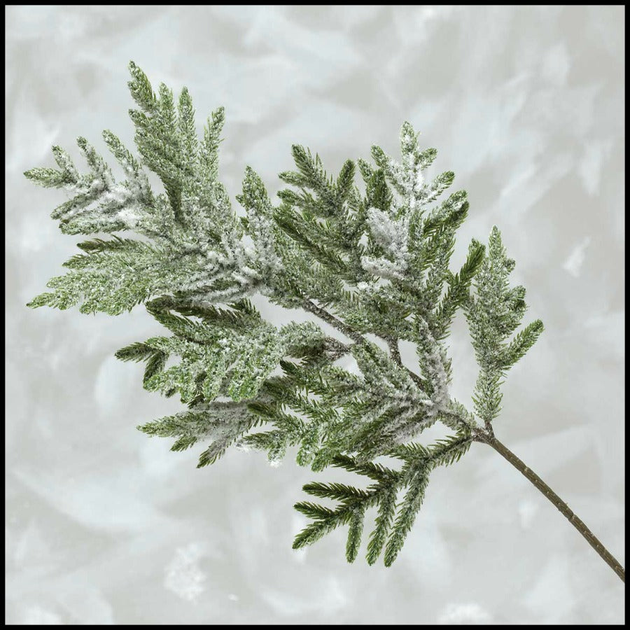 "Frosted Fir 19"" Spray"