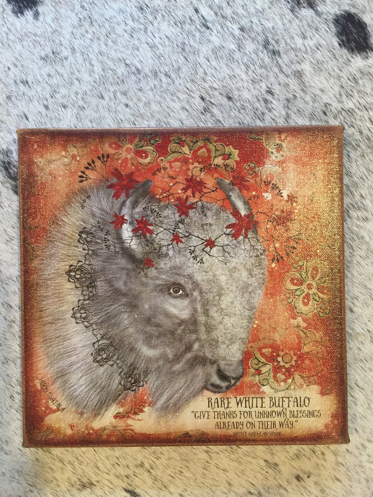 """Rare White Buffalo...Give Thanks"" Canvas Art 8""x 8"""