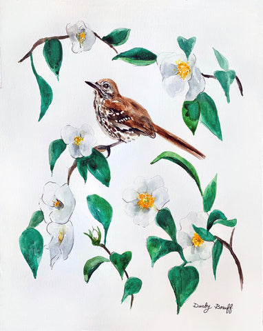 Brown Thrasher and Cherokee Rose