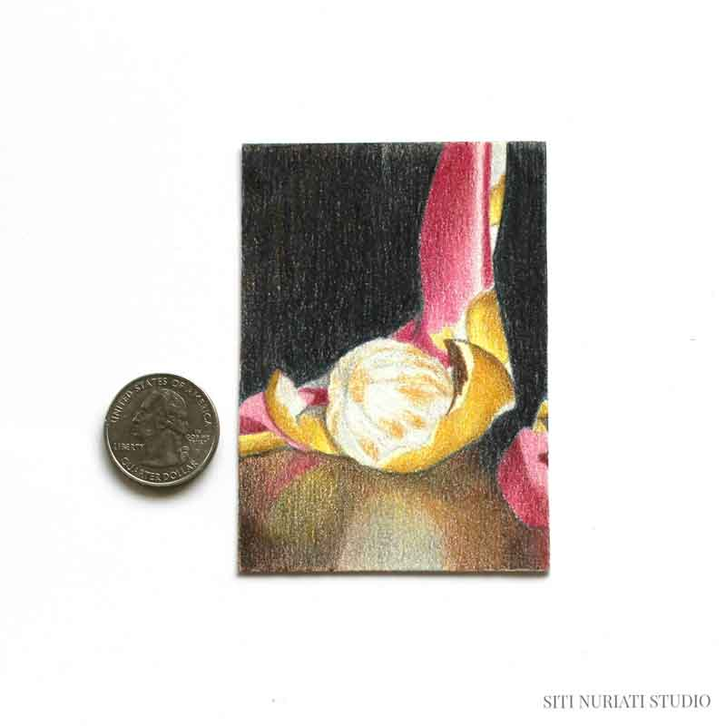 Peeled Orange and Scarf ACEO Original Painting