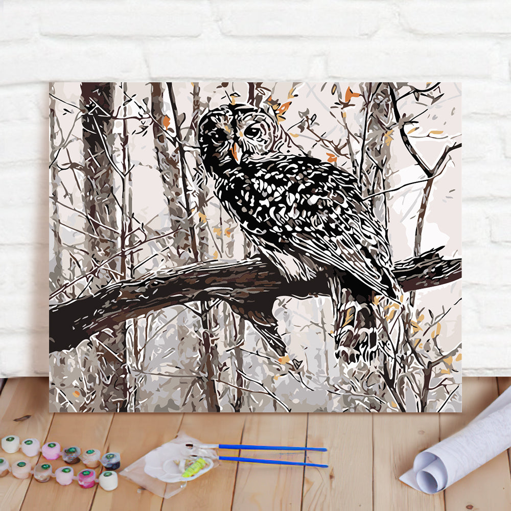 DIY Paint By Numbers Custom Photo Painting Home Decor Wall Hanging-Cute owl Painting