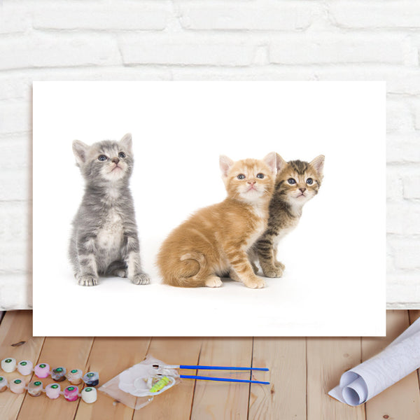 DIY Paint By Numbers Custom Photo Painting Home Decor Wall Hanging-Three Cats Painting