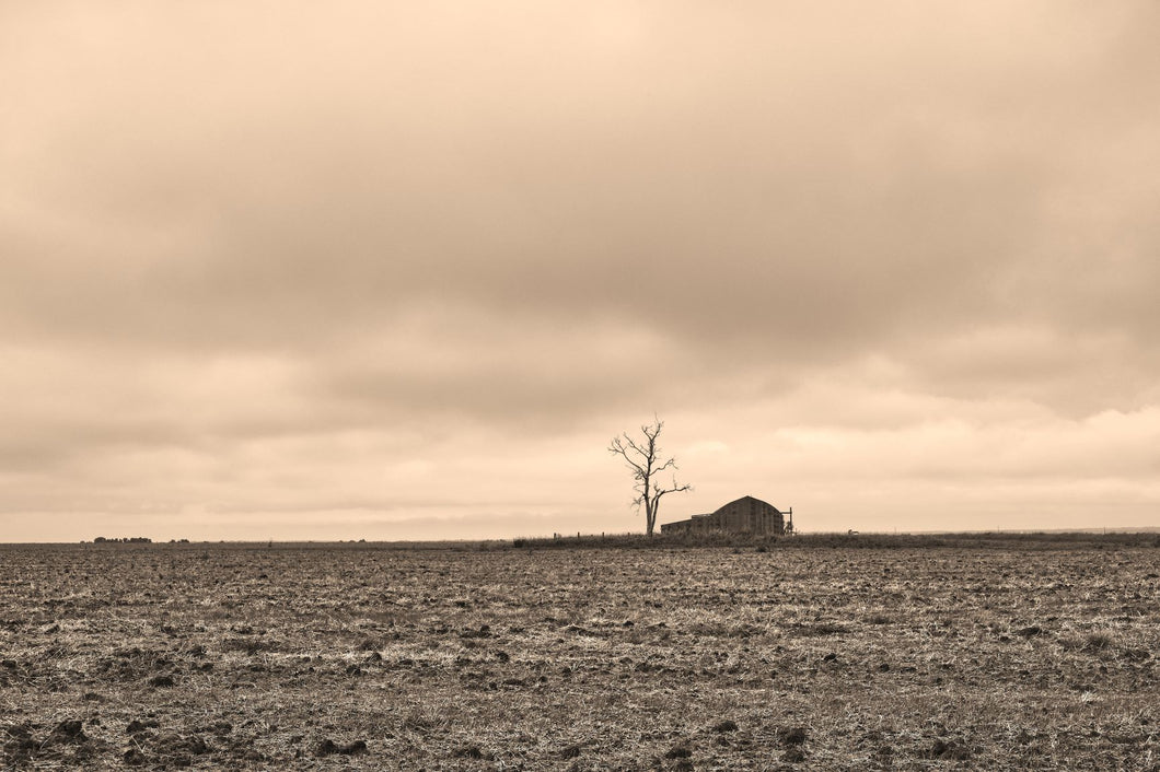 Lonely Barn
