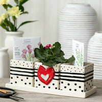 Red Heart Herb Planter Set