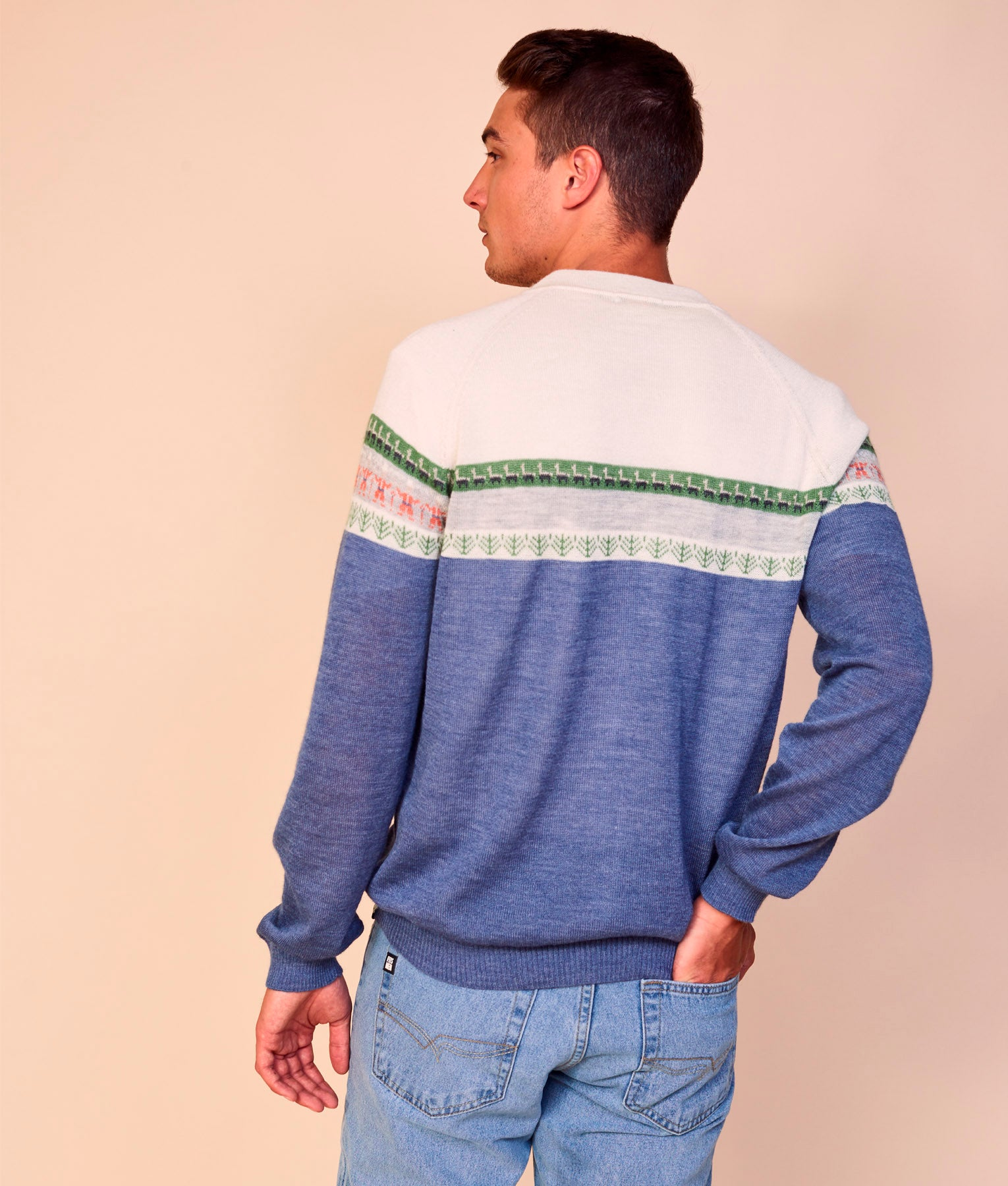 ANDEAN VIEW CARDIGAN