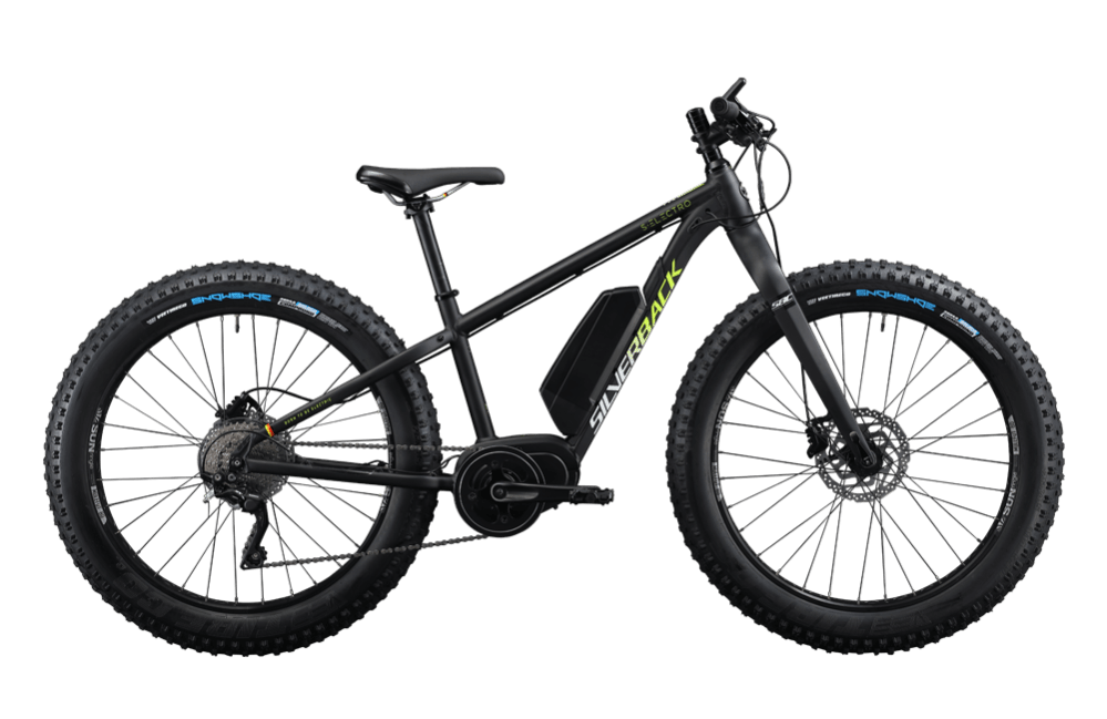 Why it is best: S-Electro Fat e-Bike