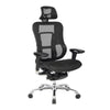 High Back Synchronous Mesh Designer Executive Chair with Adjustable Headrest and Chrome Base - Black