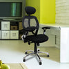Ergo - Ergonomic Luxury High Back Executive Mesh Chair with Chrome Base Certified for 24 Hour Use - Black