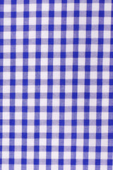 Cobalt Gingham Seersucker: Button-Down Collar, Short Sleeve