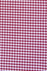 Brick Red Mini Gingham: Semi-Spread Collar, Barrel Cuff