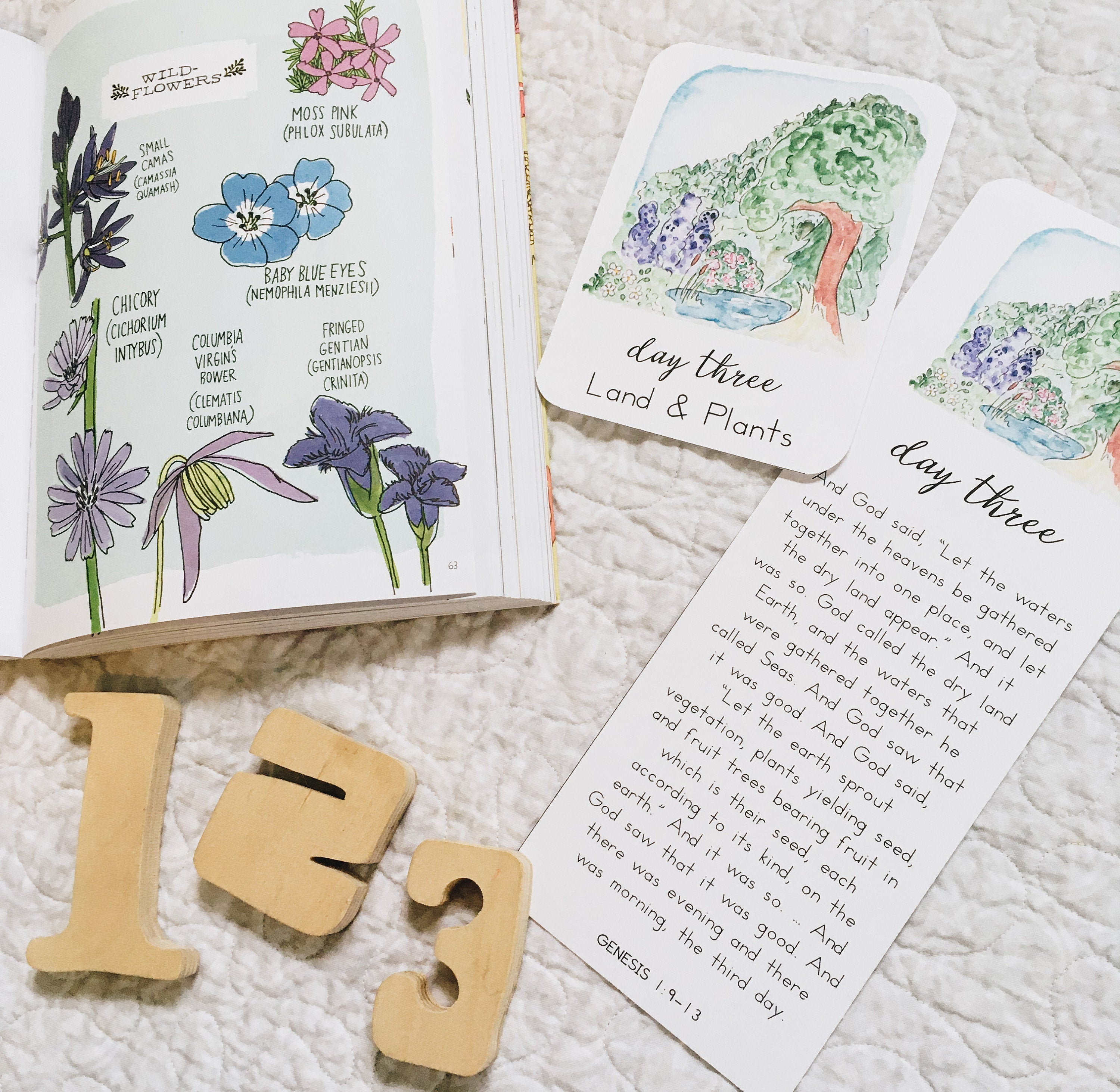 Days of Creation: Scripture Story Cards