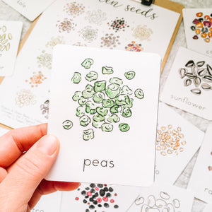 Garden Seeds Flashcards & Mini Poster | Montessori Charlotte Mason Homeschool Nature Study Printables