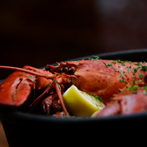 NYC Seafood Restaurant & Oyster Bar | Cull & Pistol – The