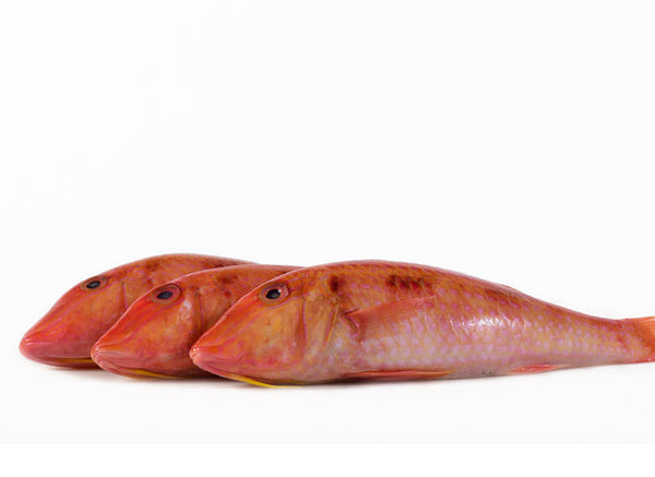 Red mullet taste cooking tips the lobster place for Eating mullet fish
