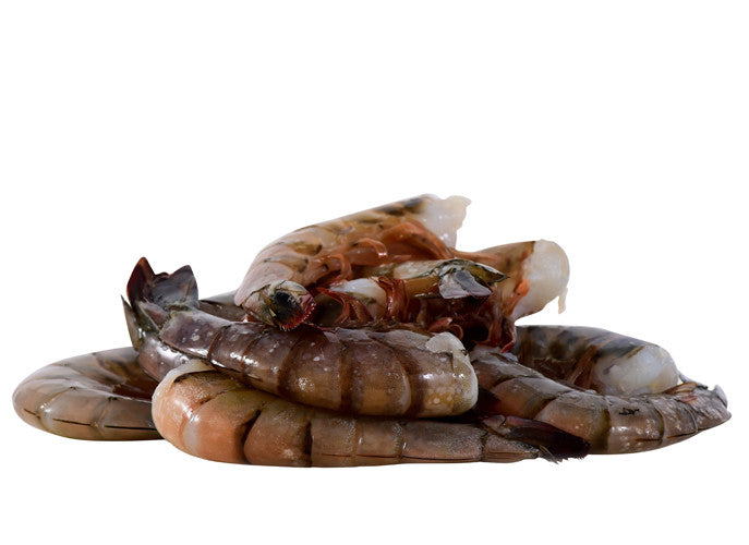 JUMBO WHITE SHRIMP (U10 CT)