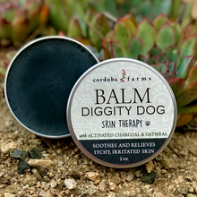 Load image into Gallery viewer, Balm Diggity Dog - Skin Therapy