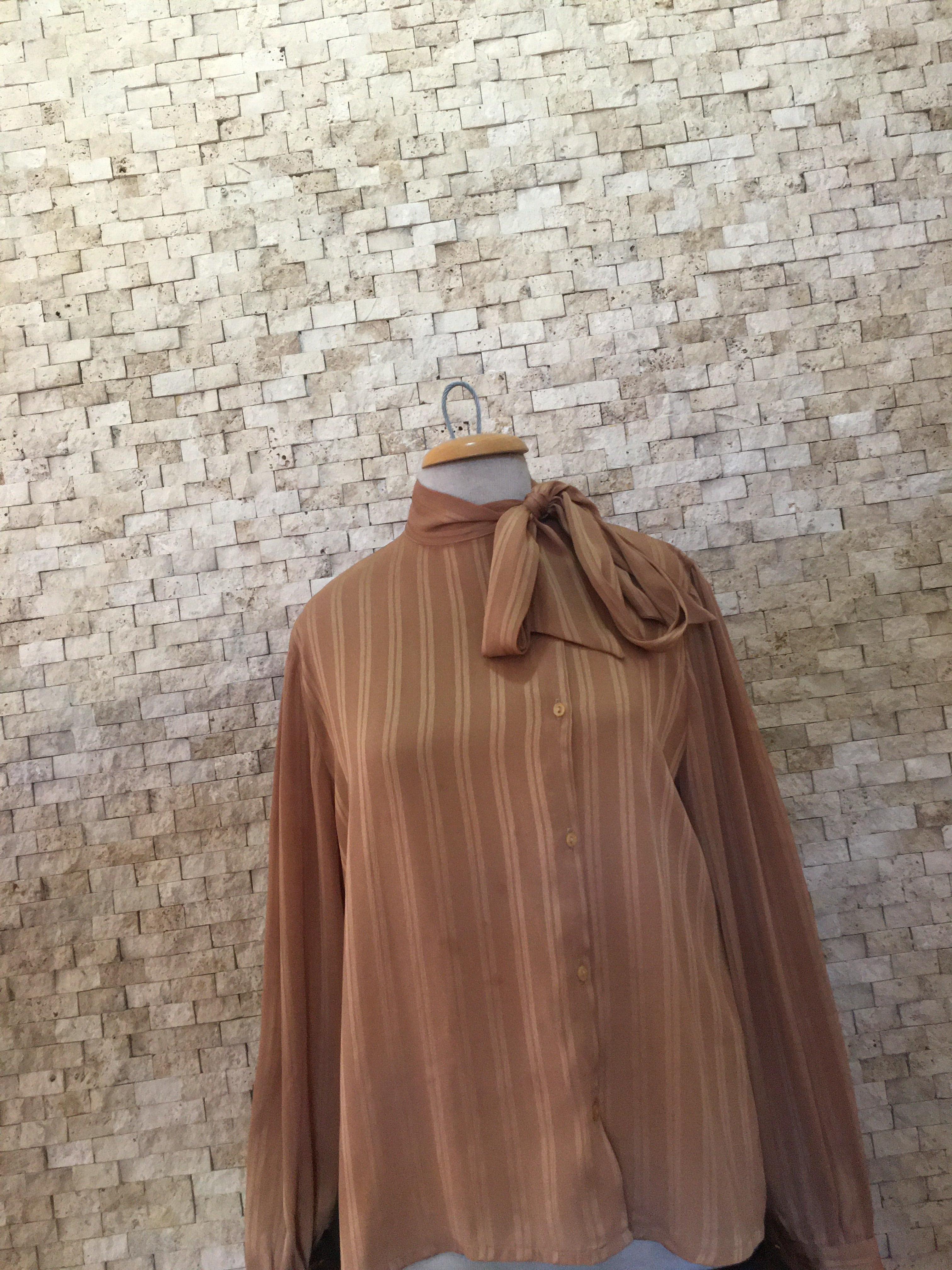 Brown Long-Sleeved Blouse